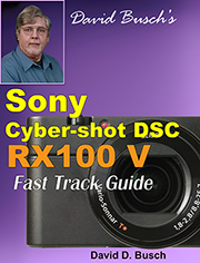 Sony RX100 V Fast Track Guide